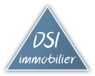 DSI Immobilier